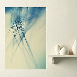 Nature Photography Fine Art Wall Sticker Decal - Angel Tears by Ingrid Beddoes (M)