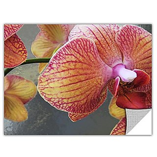 ArtWall ArtApeelz Orchid Study Removable Graphic Wall Art by Dean Uhlinger, 36 by 48-Inch