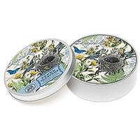 Michel Design Works 12 Count Into The Woods Coasters In Tin, Multicolor