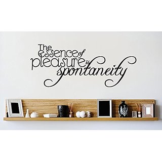 Design with Vinyl 1 Zzz 584 Decor Item Essence of Pleasure is Spontaneity Quote Wall Decal Sticker, 10 x 20-Inch, Black