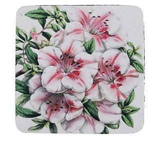 Golden Hill Studio Azalea Coaster (Set of 8), Multicolored
