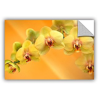 ArtWall Kathy Yates Yellow Phalaenopsis Appeelz Removable Graphic Wall Art, 32 by 48