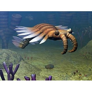 Natural History Wall Murals - An Anomalocaris Explores a Middle Cambrian Age Ocean Floor - 24 inches x 18 inches - Peel
