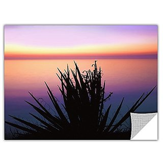 ArtWall Artapeelz Dean Uhlinger Pacific Cliff Yucca Removable Graphic Wall Art, 24 by 32-Inch