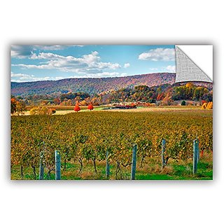 ArtWall Steve Ainsworths Vineyard in Autumn Art Appeelz Removable Graphic Wall Art, 12 x 18