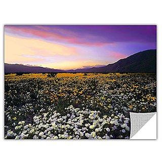 ArtWall Dean Uhlinger Borrego Desert Spring Removable Graphic Wall Art, 18-Inch by 24-Inch