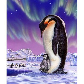 New Signature Collection Queen Size PENGUIN Royal Plush Blanket
