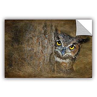 Antonio Raggios Peeping Owl, Removable Wall Art Mural 24X36