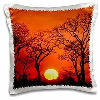3dRose South Africa, Kruger Np, Trees Silhouetted At Sunset-Af42 Lho0000-Lisa Hoffner-Pillow Case, 16 by 16