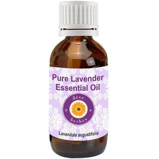 Pure Lavender Oil - Lavandula Angustifolia