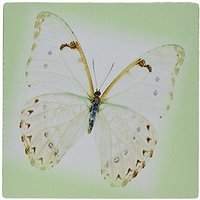 3dRose LLC 8 X 8 X 0.25 Inches Mouse Pad, White/Soft Green Butterfly On Mint Green (mp_44765_1)