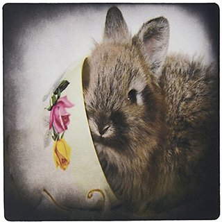 3dRose LLC 8 x 8 x 0.25 Inches Lion Head Bunny in a Teacup Mouse Pad (mp_6417_1)
