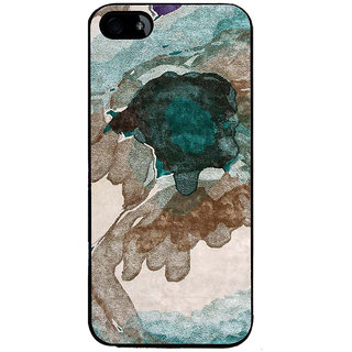 Ayaashii Color Spread Back Case Cover for Apple iPhone 5::Apple iPhone 5S