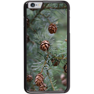 Ayaashii Pine Cone Tree Back Case Cover for Apple iPhone 6