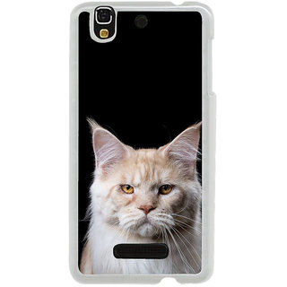 ifasho Innocent Cat with brown Eyes Back Case Cover for Yureka