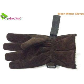 Men's Winter Thick 3M Warm Gloves