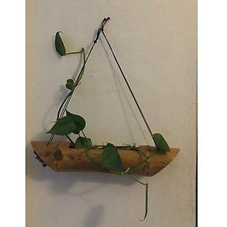 Vertical Bamboo Pot