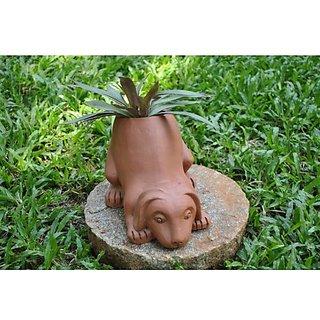 Dogplanter