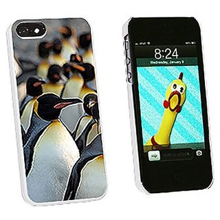 Graphics and More Penguins Snap-On Hard Protective Case for iPhone 5/5s - Non-Retail Packaging - White