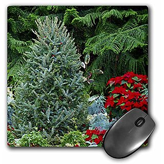3dRose LLC 8 x 8 x 0.25 Inches Christmas Tree Poinsettia Mouse Pad (mp_8432_1)