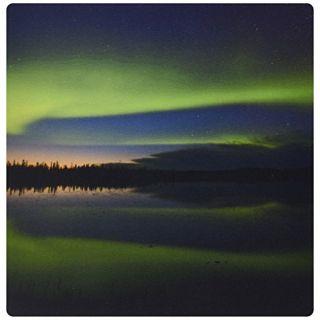 3dRose LLC 8 x 8 x 0.25 Alaska Arctic Circle Bettles Northern Lights Jaynes Gallery Mouse Pad (mp_87406_1)