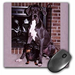 3dRose LLC 8 x 8 x 0.25 Inches Blue Great Dane Mouse Pad (mp_808_1)