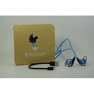 Blue Canary Wireless Bluetooth V4.1 Headphones Sport Sweatproof Headset with APT-X/Mic for iPhone 6s Plus Samsung Galaxy