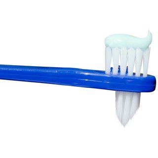Stim Denture Brush