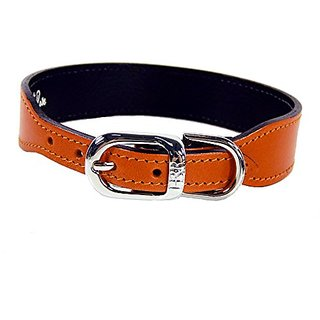Hartman & Rose Plain Nickel Plated Dog Collar, 8 to 10-Inch, Orange