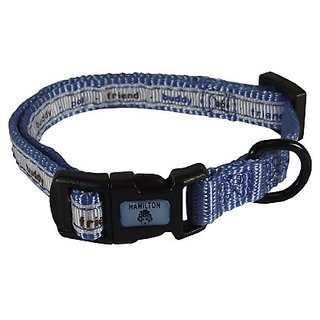 Hamilton Pixie Pet Collection Guys and Dolls Fashion Adjustable Dog Collar, 3/8-Inch, Text/Blue