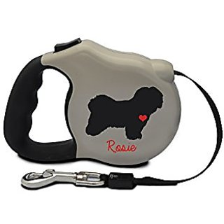 Avant Garde Havanese Retractable Dog Leash, Small, Stone