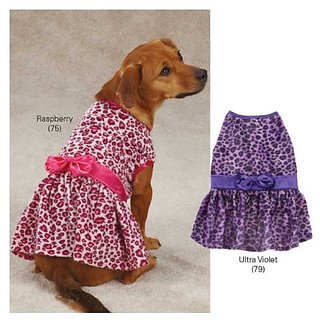 Vibrant Leopard Dog Dress Color: Raspberry, Size: Small (12