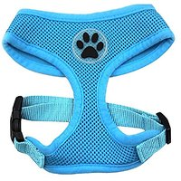 BINGPET BB5001 Soft Mesh Dog Harness Pet Walking Vest Puppy Padded Harnesses Adjustable , Blue Extra Small
