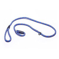 TinFmoon Blue Pet Dog Nylon Adjustable Loop Slip Leash Rope Lead