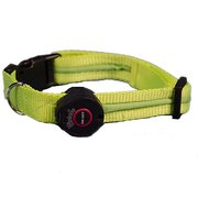 Aviditi BC208-M LED Lighted Dog Collar, Green With White LED Lights, Medium