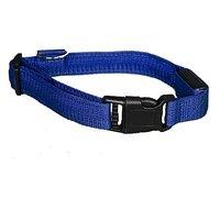 Aviditi BC701-M LED Lighted Dog Collar, Blue With Blue LED Lights, Medium