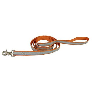 OllyDog Nightlife II Leash, 6-Feet, Orange/Light Blue