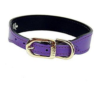 Hartman & Rose Plain Gold Plated Dog Collar, 16 to 18-Inch, Grape