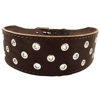"""3"""" Extra Wide Heavy Duty Genuine Leather Studded Brown Leather Collar. Fits 20""""-24.5"""" Neck. For Large Breeds - Rottweile"""