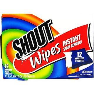 SC Johnson Shout Wipes