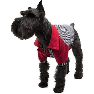 Legitimutt Cotton Polo Dog T-Shirt with Pinstripe, XX-Small, Red
