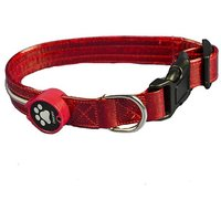 Aviditi BL603-L LED Lighted Dog Collar, Red With Red LED Lights, Large