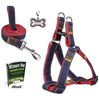 Olivery Step-in Dog Leash Harness With FREE Stainless Steel Pet ID Tag. No Pull & No Choke, Adjustable & Heavy Duty Dog