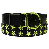 Platinum Pets Genuine LC29INCLMSTR Large Leather Dog Collar With Stars, Corona Lime