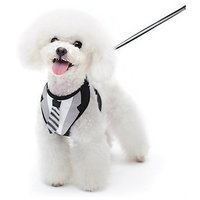 Dogo EasyGo Dog Tuxedo Necktie Vest Harness With Matching Leash (L)