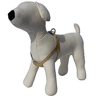 Scrappy Pets No Choke Premium Leather Dog Harness, Size 1/9-12-Inch, Gold