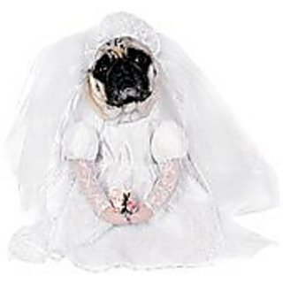 Rubies Costume Co Bride Pet Costume, Large, Large