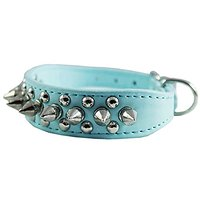 8-10 Cyan Faux Leather Spiked Studded Dog Collar 7/8 Wide For Small/X-Small Breeds And Puppies