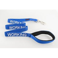 WORKING Dexil Friendly Dog Collars Color Coded Dog Accident Prevention Leash 4ft/1.2m Prevents Dog Accidents By Letting