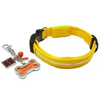 Alfie Pet By Petoga Couture - Kasey LED Flashing Pet Safety Collar With Photo Charm Keychain Set - Color: Yellow, Size: